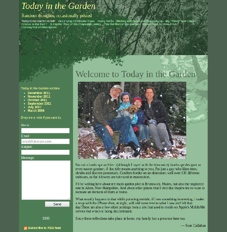 Example site using the template