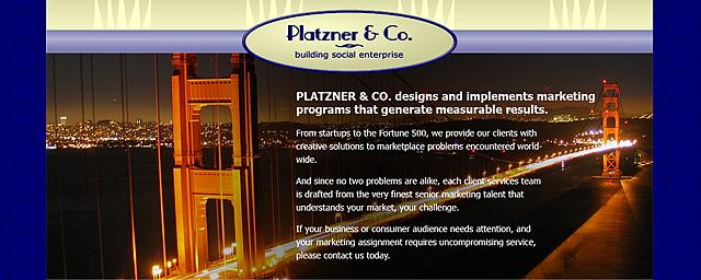 Proposed Platzner & Co. Website